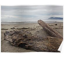Misty Day on the Oregon Coast Poster