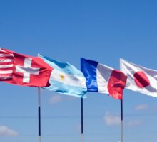 a row of 10 flags waving Sticker