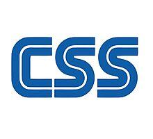 CSS Web programmer Photographic Print