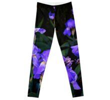 Irises for spring beauty Leggings