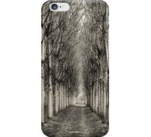Paulownia Plantation at North Richmond NSW iPhone Case/Skin