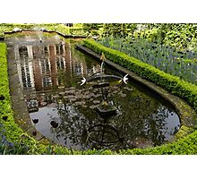Backyard Tranquility - a Beautifully Landscaped Garden with a Fountain Photographic Print