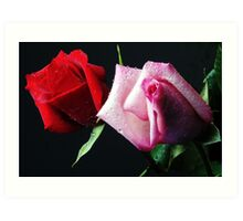 A Study in Red & Pink (Greeting Card or Print) Art Print