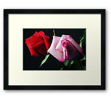 A Study in Red & Pink (Greeting Card or Print) Framed Print
