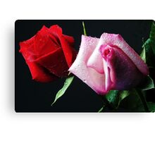 A Study in Red & Pink (Greeting Card or Print) Canvas Print