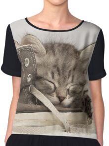 Cute Siberian Kitten sleeping on shoe Chiffon Top