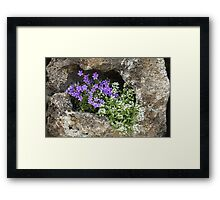 The Gift Grows! Framed Print
