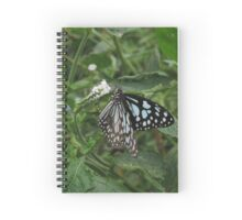 Paper Kite Butterfly on a White Flower Spiral Notebook