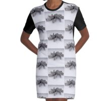 USD Graphic T-Shirt Dress
