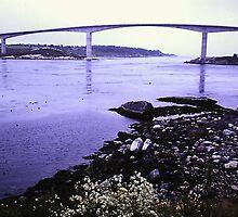 Bridge at Saltstraumen by RyanLutton