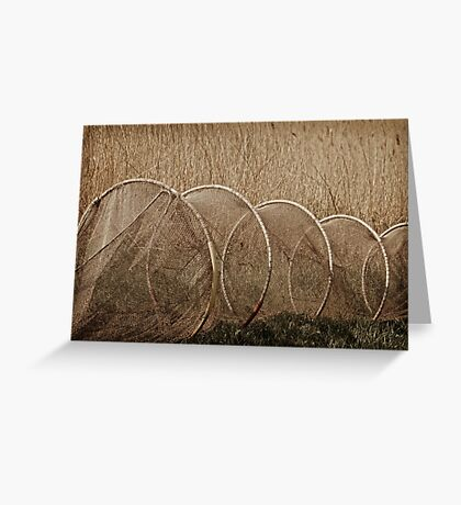 Through Hoops Greeting Card