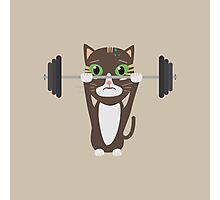 Fitness cat weight lifting   Photographic Print
