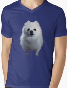 Gabe the Dog Mens V-Neck T-Shirt