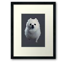 Gabe the Dog Framed Print