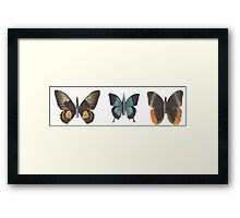 Bullet with Butterfly Wings Framed Print