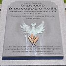 The Gravestone of Jeremiah O'Donovan Rossa  by Declan Carr