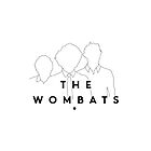 The Wombats by butterflyworld
