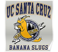 Santa Cruz Banana Slug Fiction Poster
