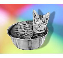 Bengal Cat in a Bowl, Pencil Drawing on Coloured Background Photographic Print
