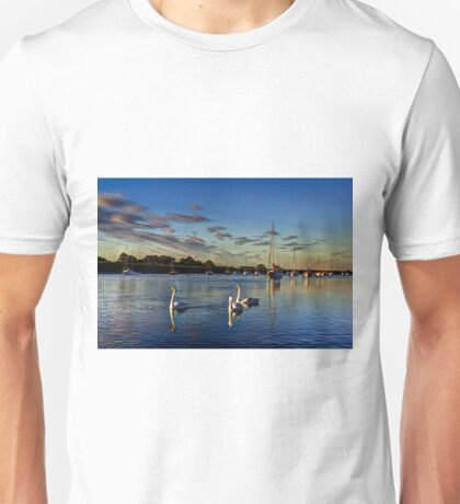 Graceful evening swans Unisex T-Shirt