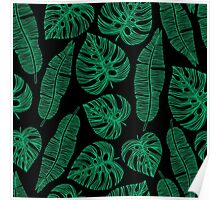 Tropical exotic palm leaves. Poster