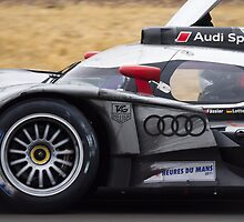 Le Mans Winner 2011 by TomGreenPhotos