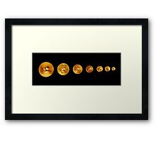 Weights Framed Print