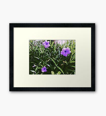 Pretty Purple Flowers Framed Print