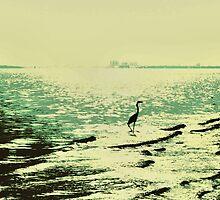 Heron by Kevin McLeod