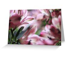 Pink Blur Greeting Card