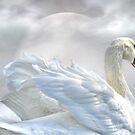 Moonlight Swan by littlecritters
