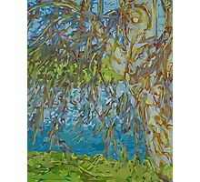 Willow By Water Photographic Print