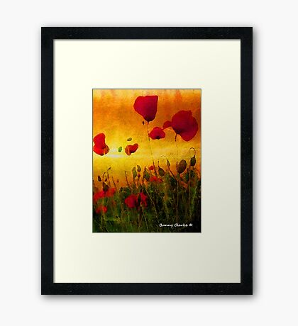 Poppy Sunset Framed Print