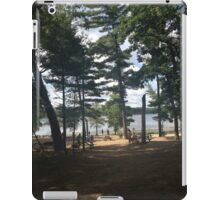Lakes of Michigan iPad Case/Skin