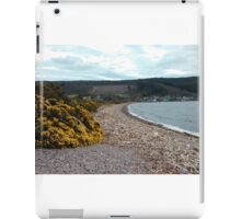 Driftwood on Loch Ness Beach  iPad Case/Skin