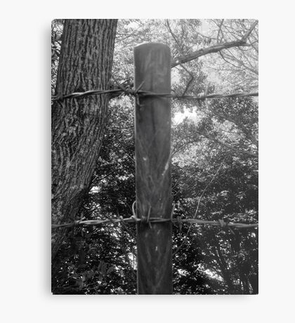 Barbed Wire On The Top Metal Print