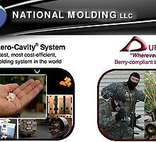 Plastic Automotive Fasteners- www.nationalmolding.com by nationalmold