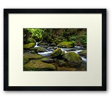 Whatcom Falls Creek Framed Print