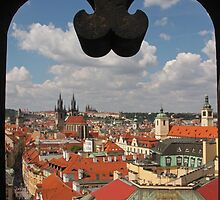 Framed Prague Landscape by Elena Skvortsova