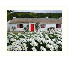 Irish Cottage With Daisies Art Print