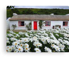 Irish Cottage With Daisies Canvas Print