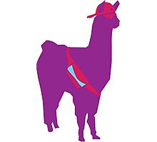 Party Llama Photographic Print