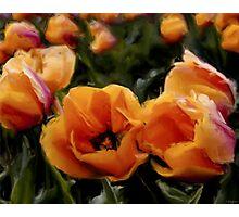 Unique Beauty - Flower Art Photographic Print