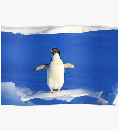Penguin Hug Poster