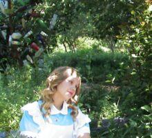 Alice & The Doctor II Sticker