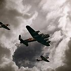 Memorial Flight by Carol Bleasdale
