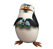 Penguin Madagascar 2 Photographic Print