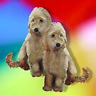 Dogs, Poodles, Golden Doodle Dogs on Multi-Colour Background by Joyce Geleynse