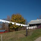Washing Line, Amish Style. by Billlee