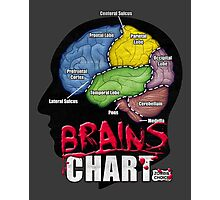 Brains Chart Photographic Print